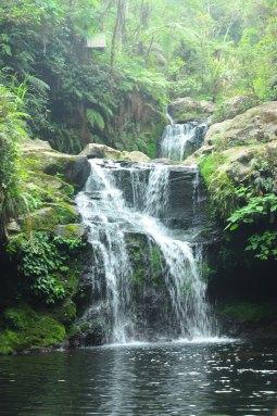 Cinchona Falls 1 and 2.*