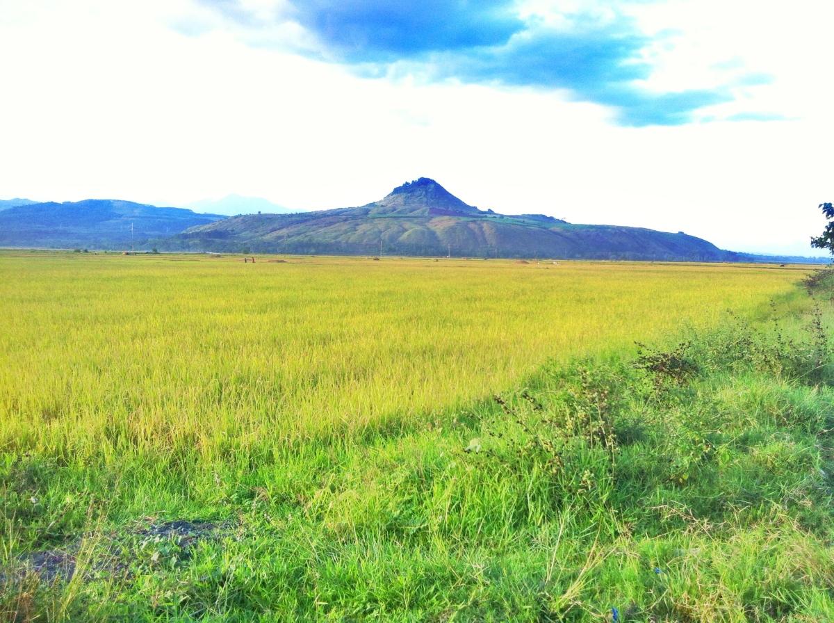 Musuan Peak: The MostOne